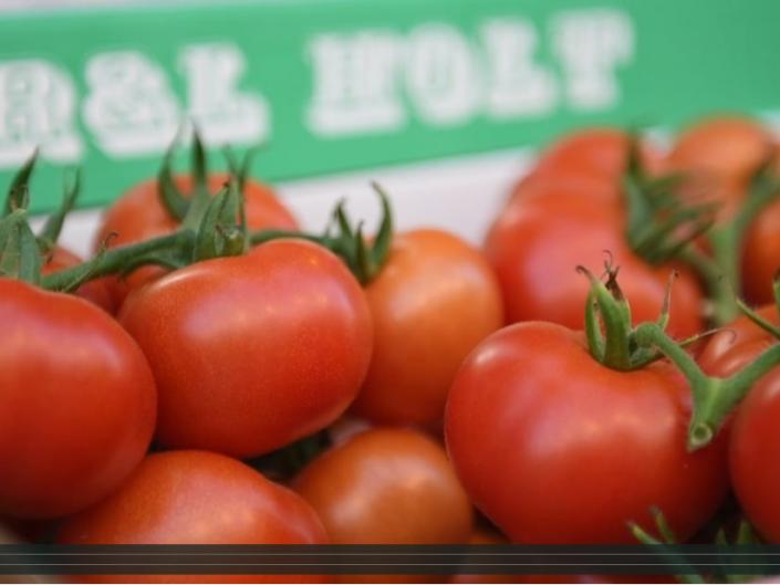 R. & L. Holt Tomatoes