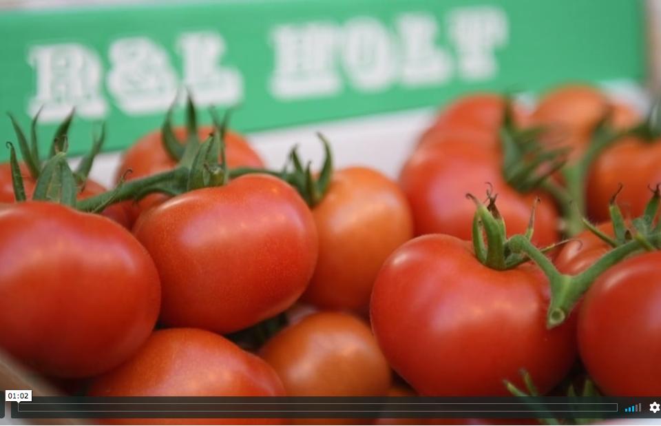 R&L Holt Tomatoes